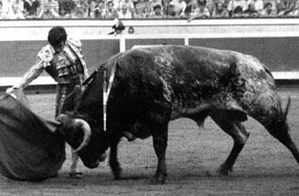 Silencio (se ha ido un hombre, un torero…)