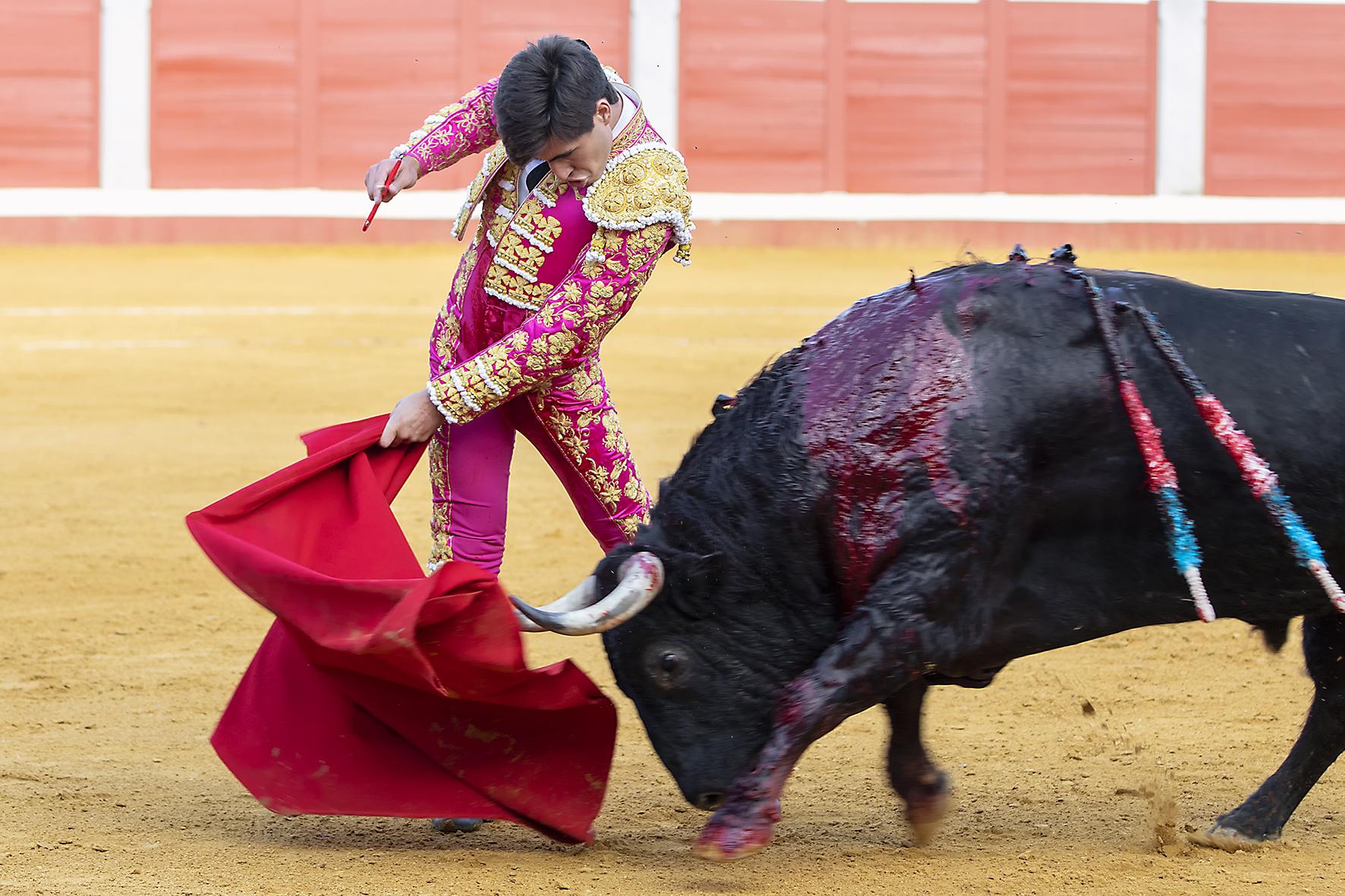 Pozoblanco - Corrida de toros - Sábado 29 de septiembre de 2018