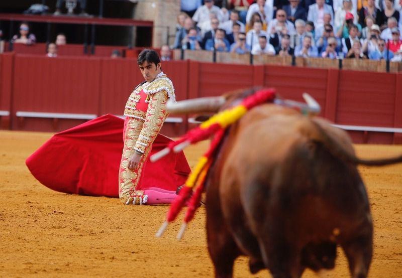 De rodillas y en los medios: así arrancó Perera su faena al bravo Aperador.