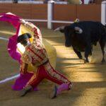 Dos leyendas del campo bravo, protagonistas de un fin de semana torista en Cuéllar