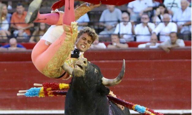 Borja Collado, herida en región occipital y múltiples varetazos
