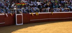 Encabo, El Cid, David Mora, Joselillo, Colombo…, en Almorox