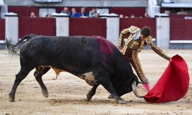 La Quinta gana una concurso condicionada por la cogida a Cortés