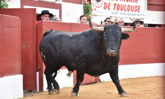 Vic-Fezensac define fechas y ganaderías para su feria