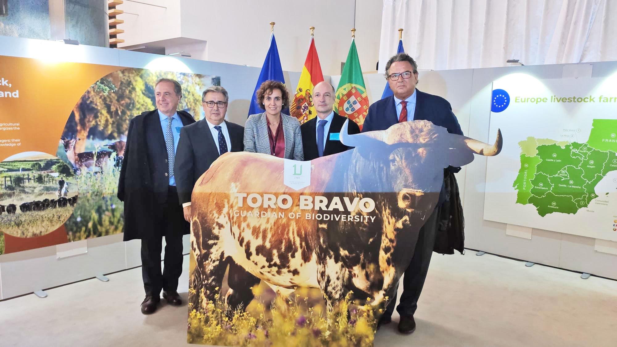 Unión de Criadores de Toros de Lidia, en el Palamento Europeo.