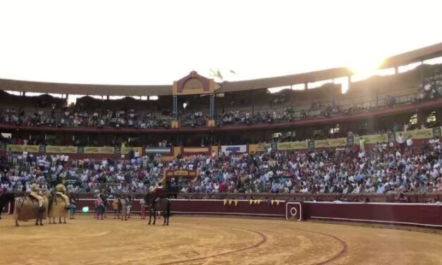 Las figuras, solidarias en Huelva