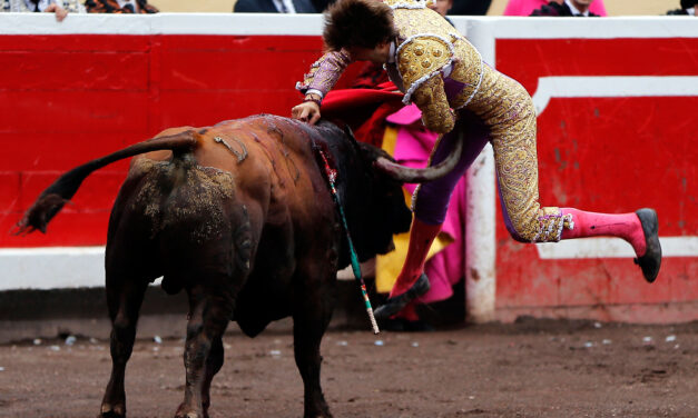 "Juan Leal: ""Bilbao me lanzó como torero"""