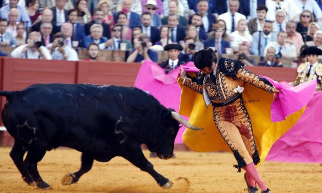 Morante ya ha tomado una decisión: ¿matará la de Miura en Sevilla?