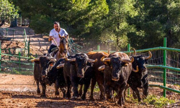 Daniel Ramos, en busca de la clase en la sierra de Castellón
