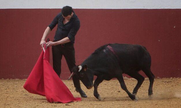 Tentadero en Fuente Ymbro: las ganaderías retoman la actividad