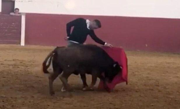 """Joaquín: """"Sí, quiero torear cuando deje el fútbol"""""""