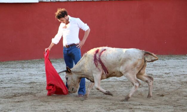 Finito de Córdoba, torería en Aurelio Hernando