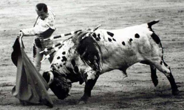 """La histórica faena de Antoñete a Atrevido, el toro """"blanco"""" de Osborne"""