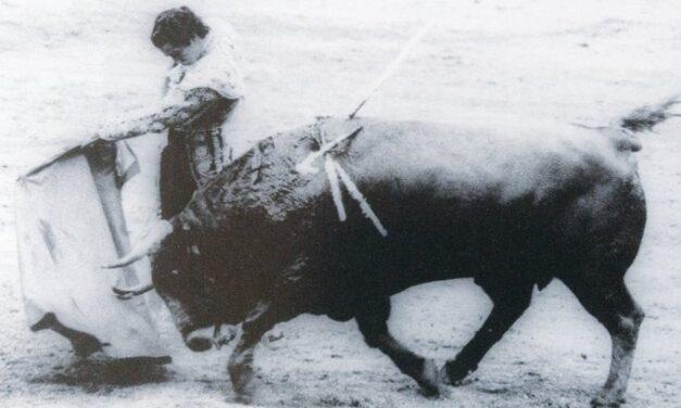 Manzanares borda el toreo con Clarín, de Manolo González