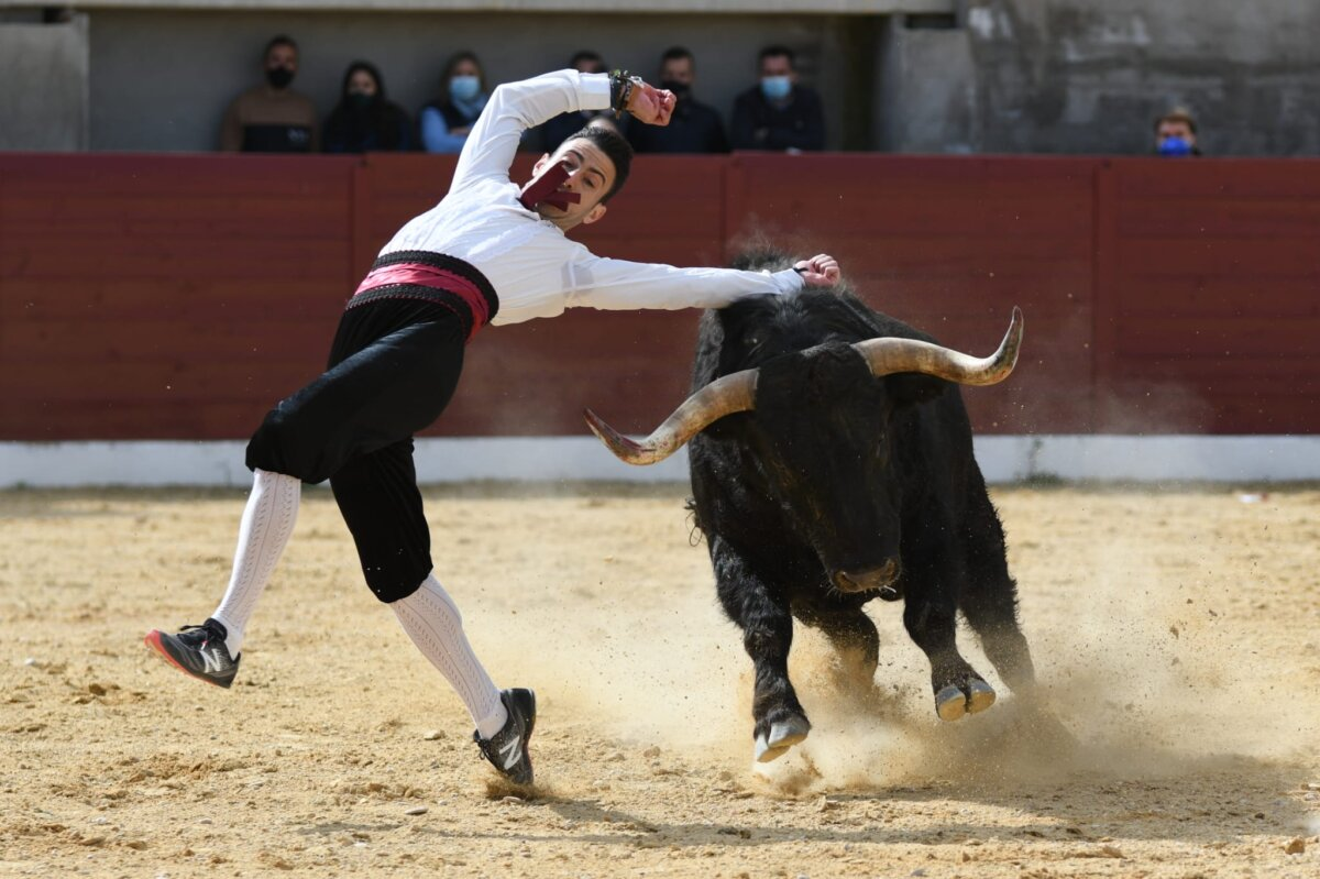 Así ha sido el primer festejo taurino celebrado en España en 2021