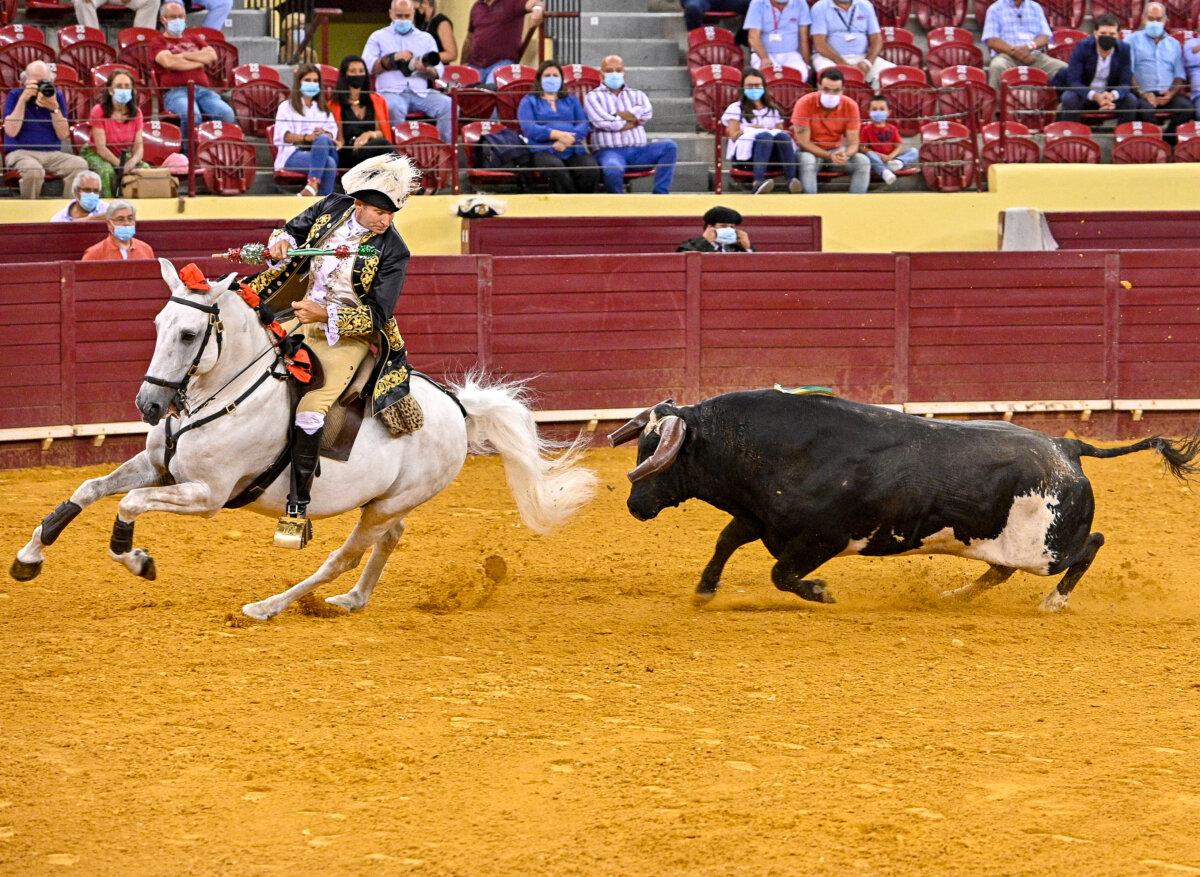 Cátedra de Ribeiro Telles con un gran toro de Vinhas