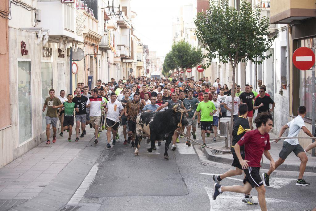 """El acoso a los ganaderos de las Tierras del Ebro: """"Somos un territorio castigado y olvidado"""""""