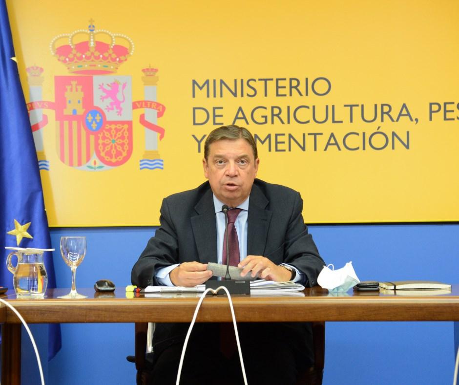 """Luis Planas: """"La propuesta de excluir el ganado de lidia de la PAC no tiene ninguna posibilidad de prosperar"""""""