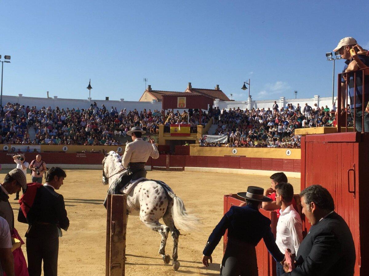 Adjudicadas las obras de reforma de la centenaria plaza de toros de Alagón