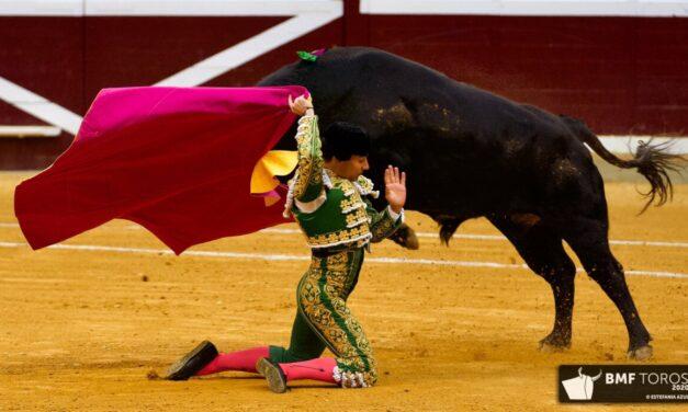 Gómez del Pilar, más bravo que los miuras
