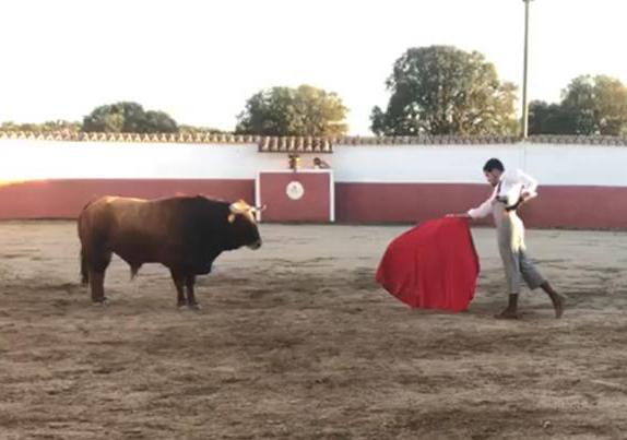 Talavante sueña el toreo en la ganadería de Vellosino