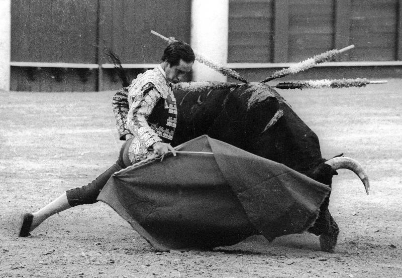 """Julio Robles: """"Espero ser figura del toreo y comprarme una finca"""""""