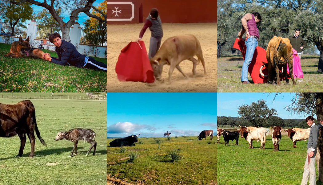 El toreo busca el refugio del campo