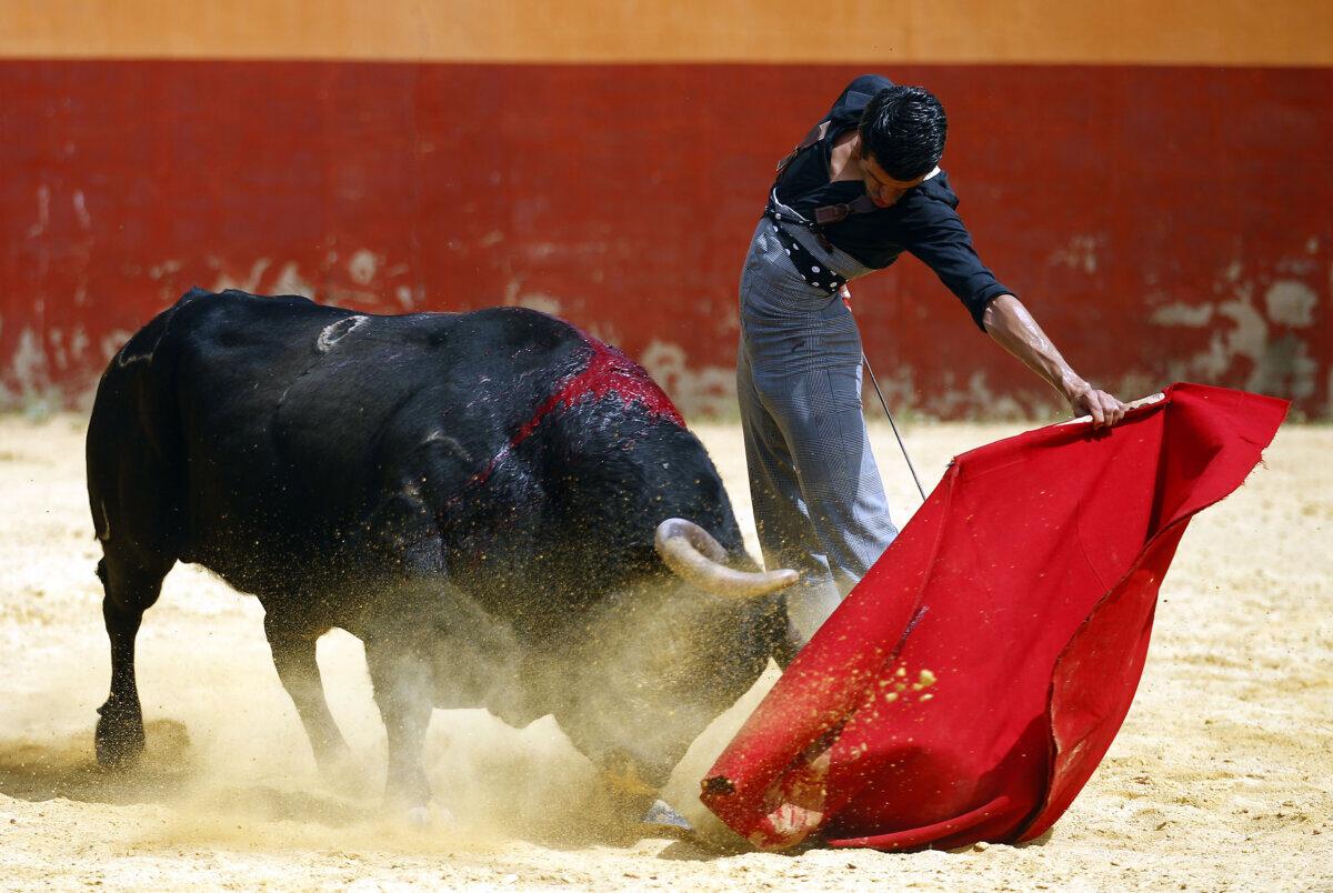 Emilio de Justo sufre un percance en el campo y se resiente de su lesión de espalda