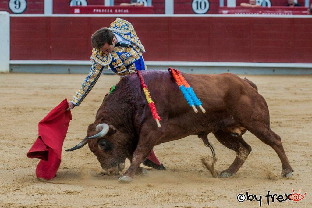 Agua, bisoñez y extraordinaria novillada de Montealto en Albacete