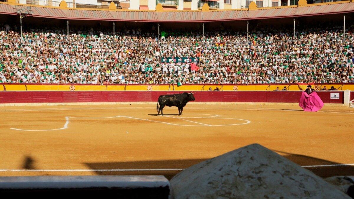Tauroemoción seguirá gestionando la feria de Huesca